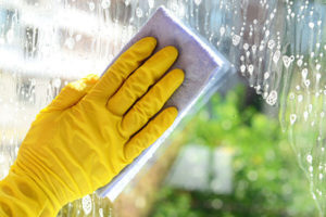 Limpieza de cristales a domicilio y en altura